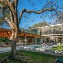 Perkins + Will Architecture House around the Tree São Paolo Brésil