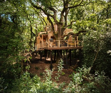 Brownlie Ernst and Marks Woodsman's Treehouse
