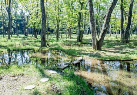 Le jardin poétique de Junya Ishigami remporte la première édition de l'Obel Award