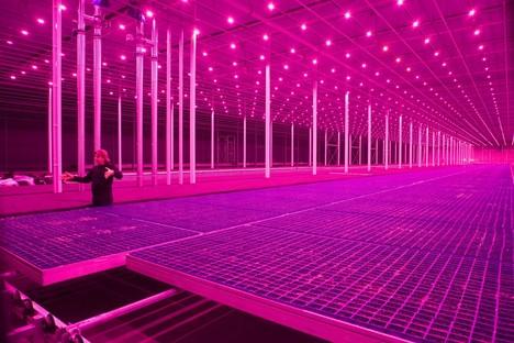Countryside, The Future l'exposition d'AMO / Rem Koolhaas au Guggenheim de New York