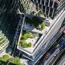 KPF gratte-ciel 18 Robinson Terrasses végétales au-dessus de la ville de Singapour