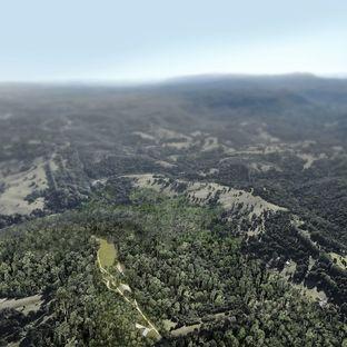 Les sheds Lune de Sang de CHROFI au cœur des forêts australiennes