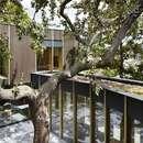 La Pear Tree House d'Edgley Design à Dulwich (Londres)