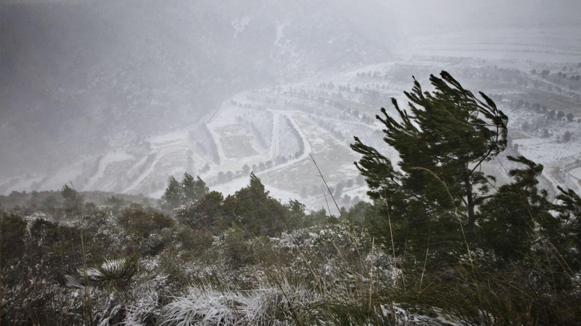 Batlle i Roig : requalification paysagère de la décharge du Garraf