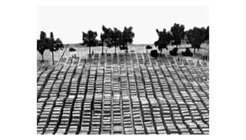 Peter Eisenman, Mémorial des victimes de l'holocauste. Berlin. 2005