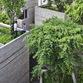 House for trees de Vo Trong Nghia Architects à Hô-Chi-Minh