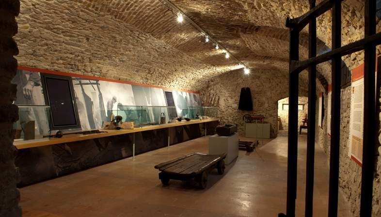 Musei del Cibo della provincia di Parma: visite guidate e laboratori didattici