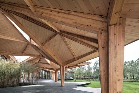 Le Forest Building en bois lamellé-collé, terre et béton signé TAO